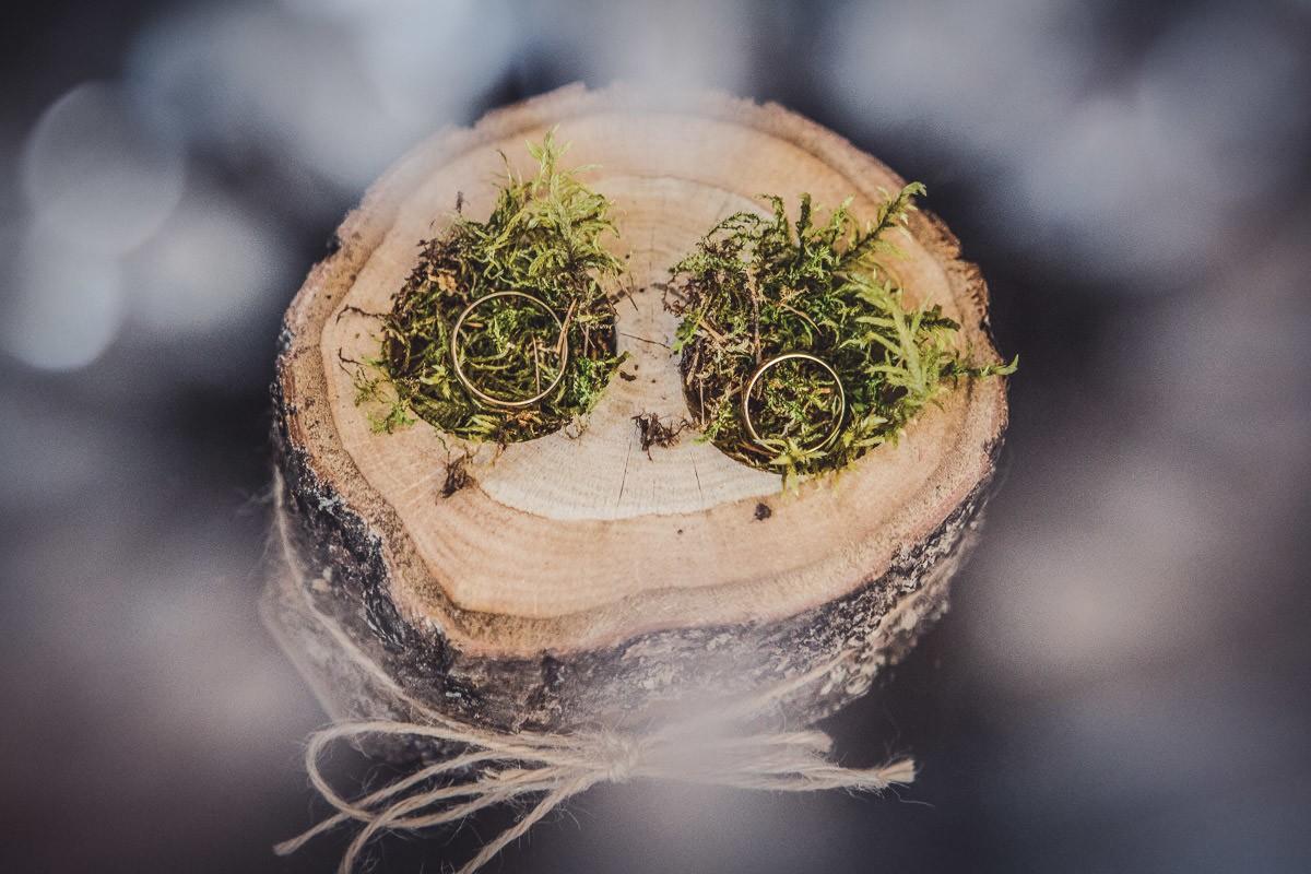 obrączki na drewnianym plastrze