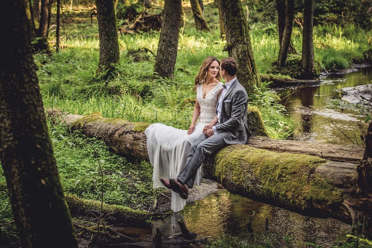 plener ślubny w zaczarowanym lesie